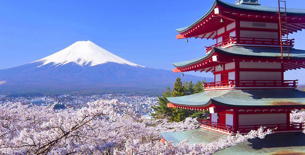 Tokyo voyage arts et voyages for Appart hotel etranger