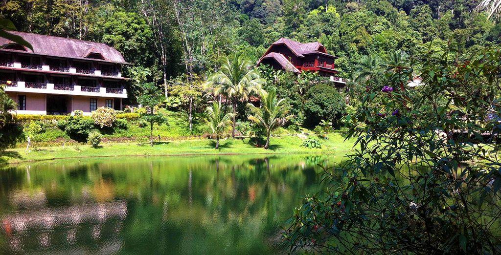 Un hôtel niché dans la nature qui saura vous séduire