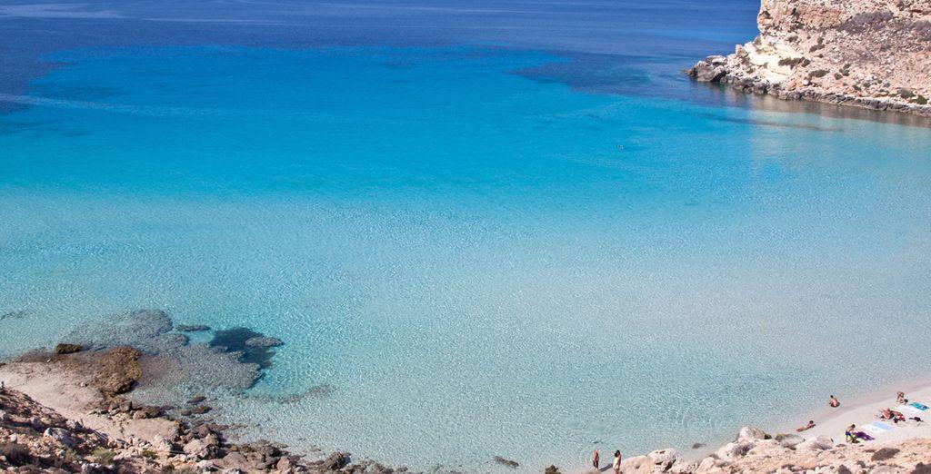 Su questa magnifica isola - Le Villette di Cala Creta Lampedusa