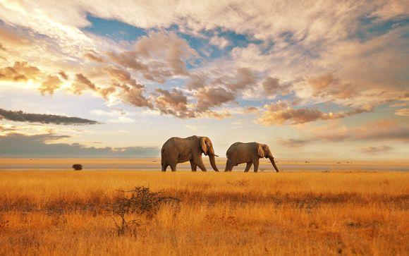Mini Safari e soggiorno mare in 5*