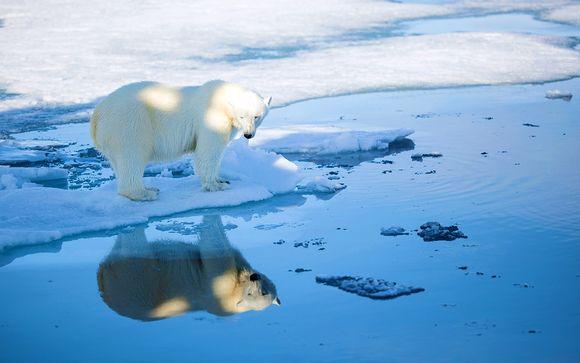 Alla scoperta di Oslo e Isole Svalbard