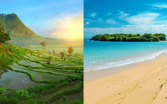 Tour di Bali: Ubud, Lovina, Candidasa e mare a Nusa Dua