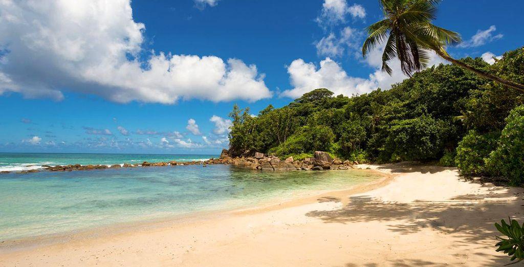 Buchen Sie Ihren Urlaub auf den Seychellen