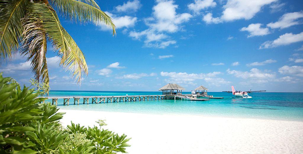 In der Landschaft atemberaubenden LUX * Süd-Ari-Atoll