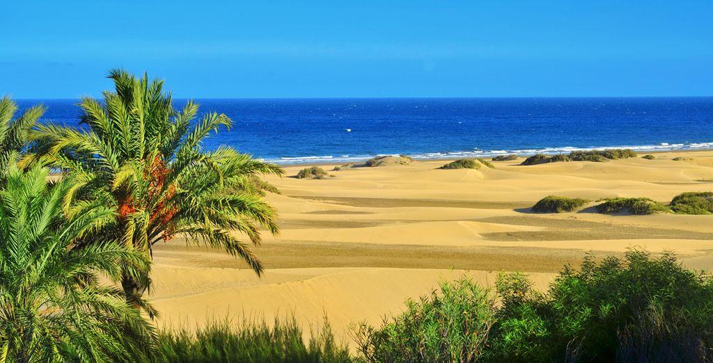 In Maspalomas Gran Canaria!