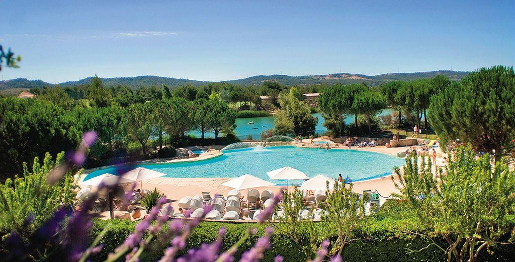 Willkommen in der Provence!