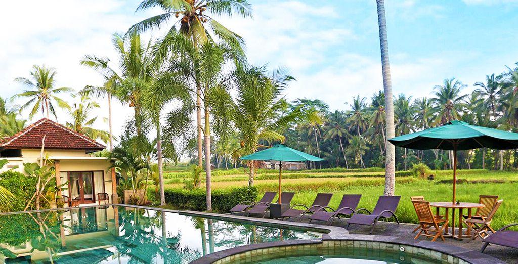 ... nach Bali...