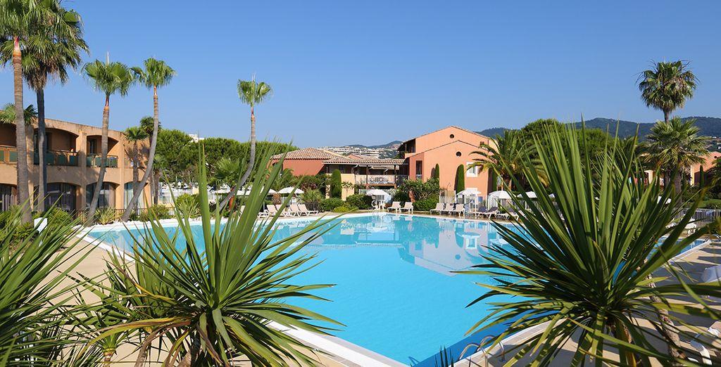 Lust auf die Côte d'Azur?
