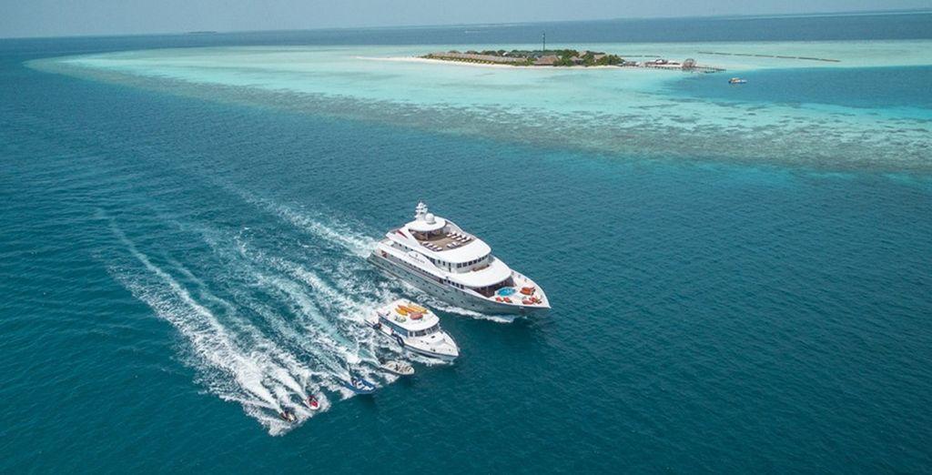 Entdecken Sie das Riff auf einer Bootsfahrt oder tauchen Sie ein in die Wellen