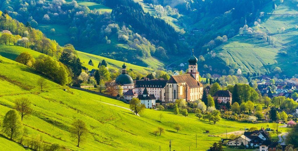 Und machen Sie einen Ausflug in den Schwarzwald