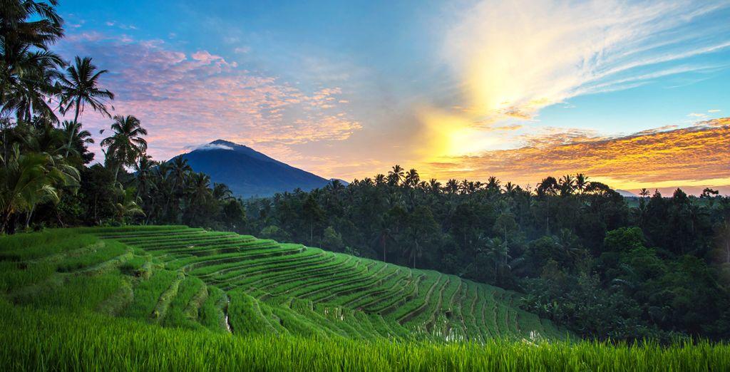 Machen Sie einen Ausflug um die göttliche Landschaft um Sie herum zu entdecken