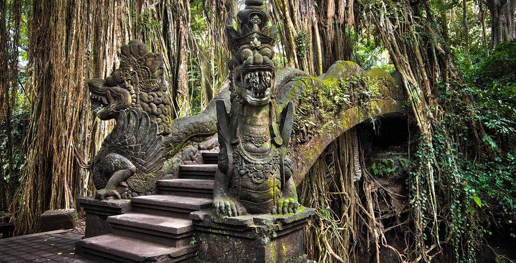 Sie besichtigen Hindu Tempel
