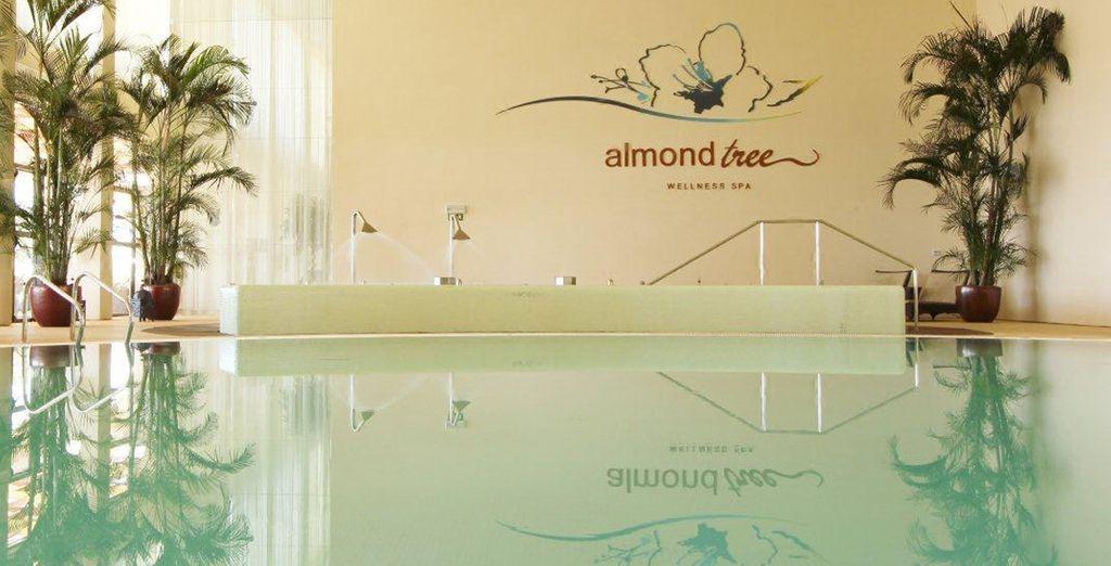 Entspannen Sie sich im Almond Tree Wellness Spa