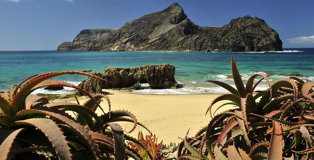 Sonnen Sie sich an den schönen Stränden von Madeira