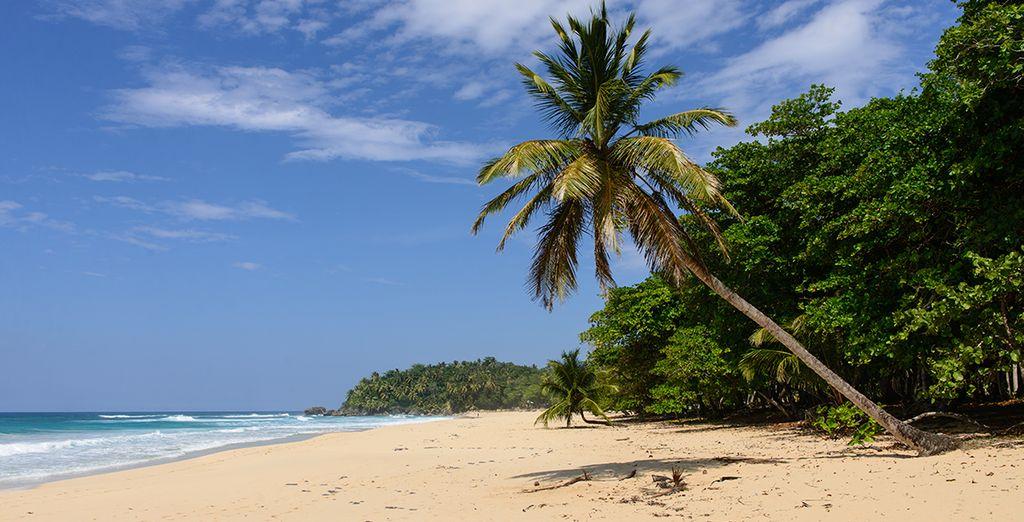 An der Nordküste von Punta Cana, entlang dem schönen Strand von Uvero Alto