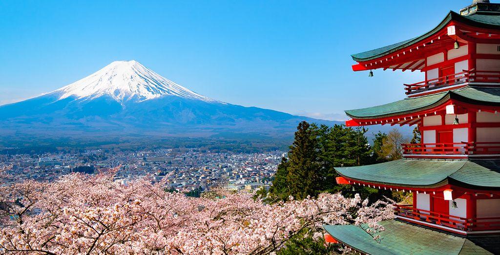 Wie wäre es mit einer Rundreise nach Japan?