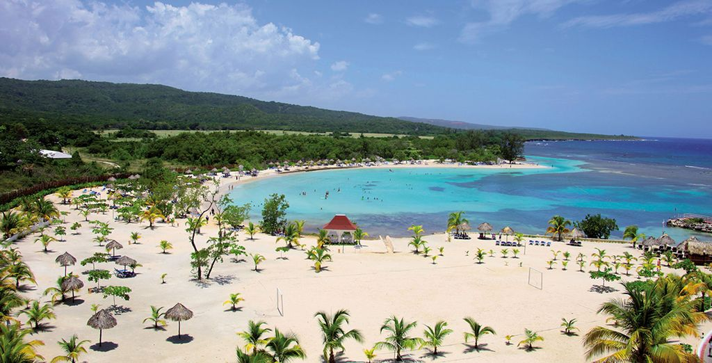 Willkommen auf Jamaika!
