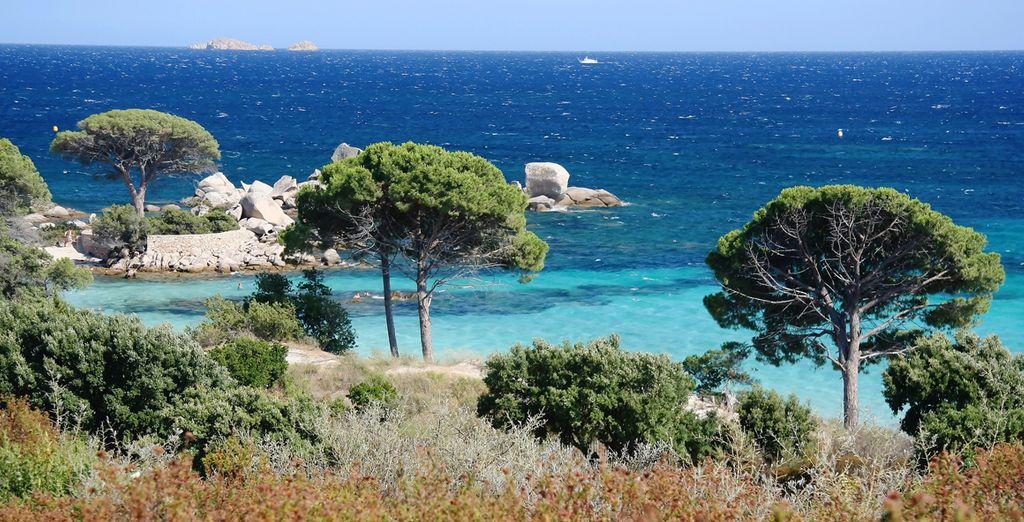 Wir wünschen Ihnen einen traumhaften Aufenthalt auf Korsika!
