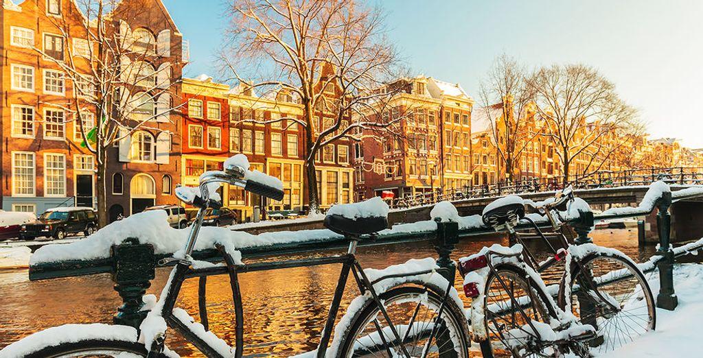 Amsterdam ist immer eine Reise wert