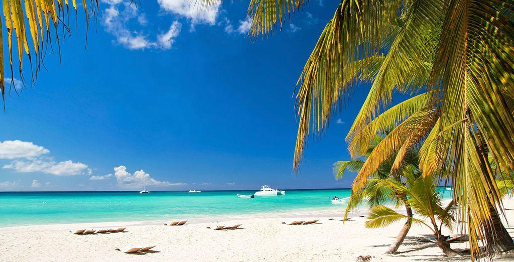 Verbringen Sie Ihren Urlaub auf der paradiesischen Insel der Dominikanische Republik