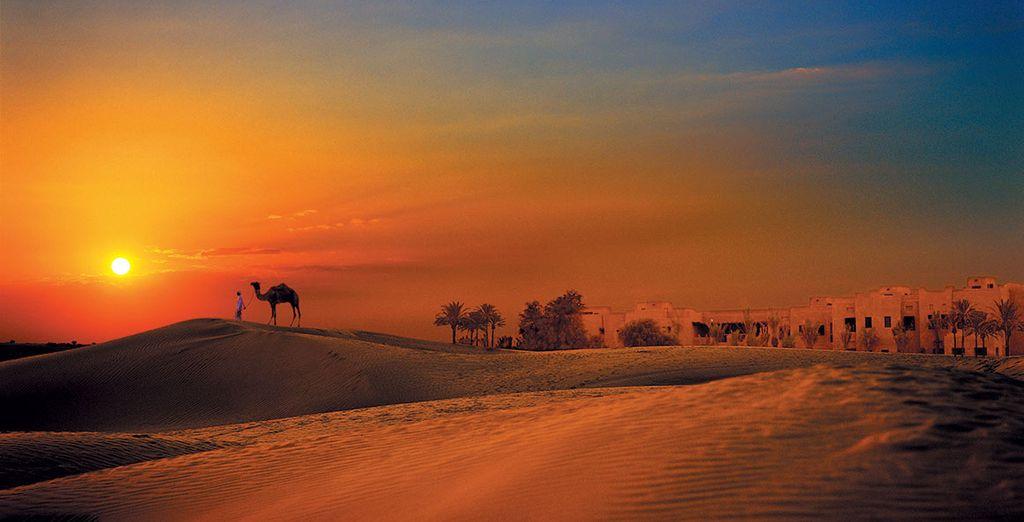 Die Wüste zum Greifen nahe