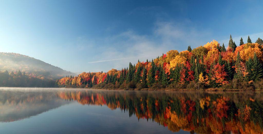 Die Natur in Kanada ist außergewöhnlich.