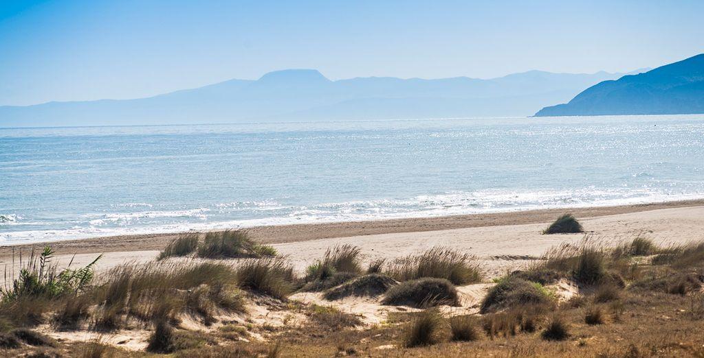 Descubre la costa de Saïda y disfruta del buen clima