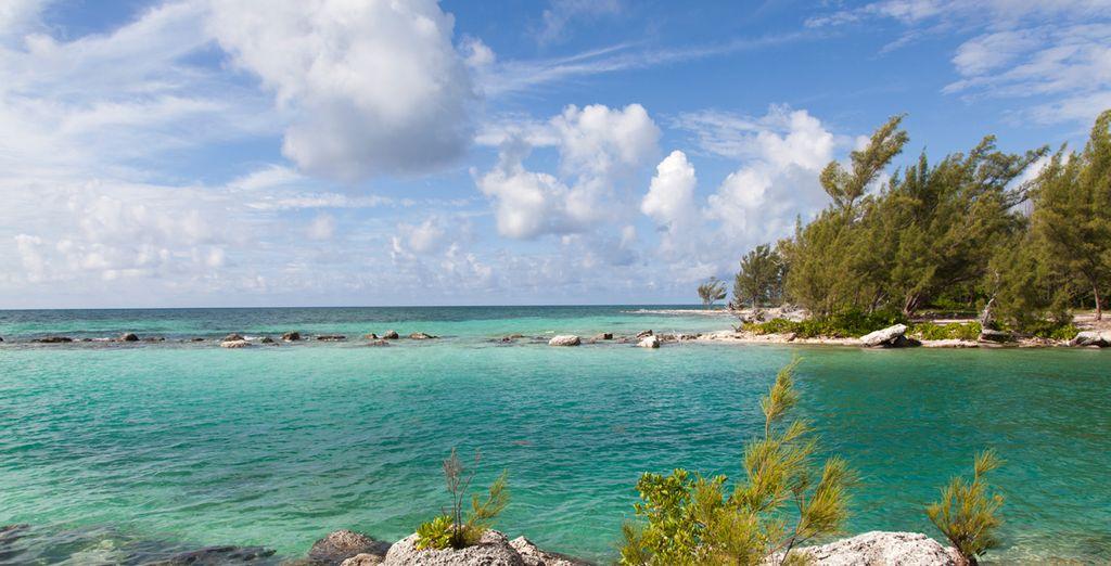 La belleza bañada por el sol y la rica cultura de la isla Gran Bahama