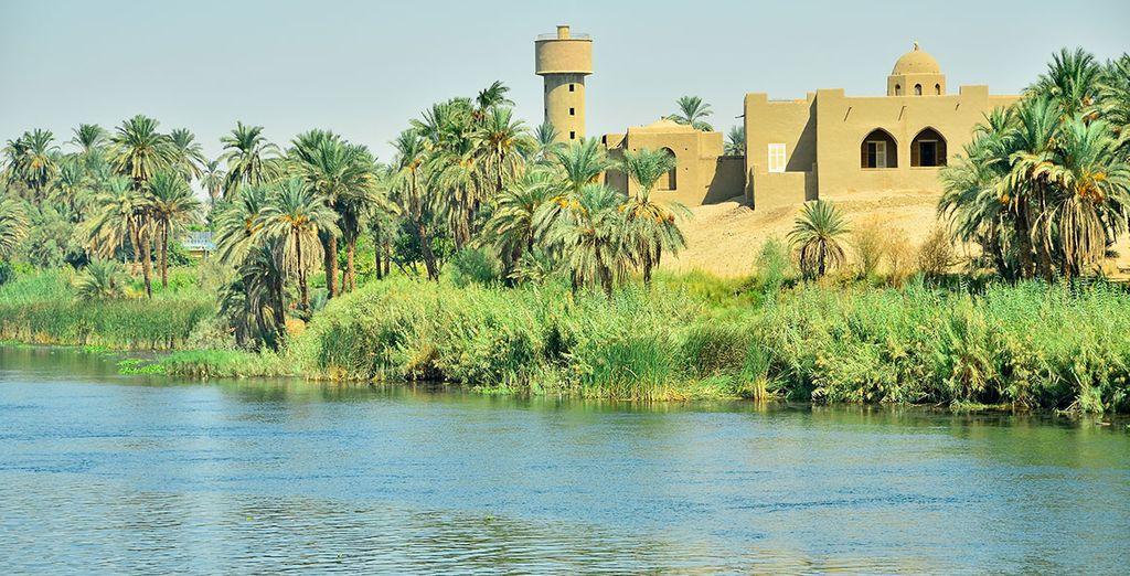 Se embarcará en un crucero por el río Nilo