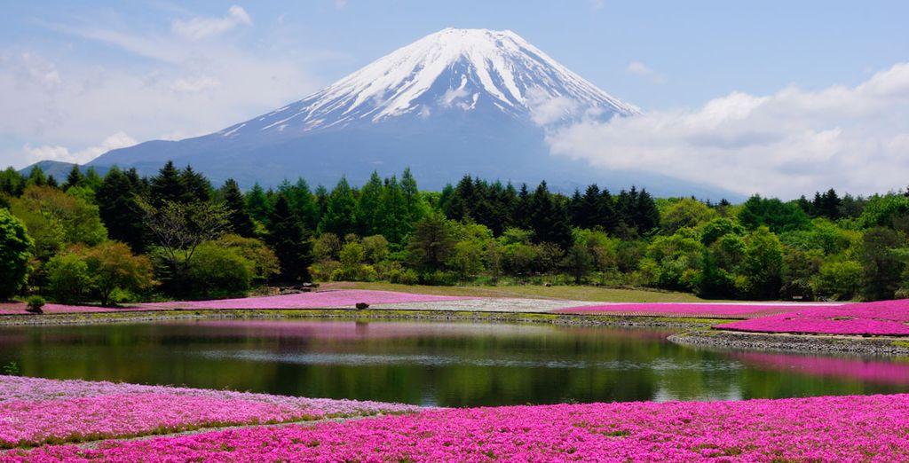 Y si escoges alargar tu viaje, despídete de Japón...