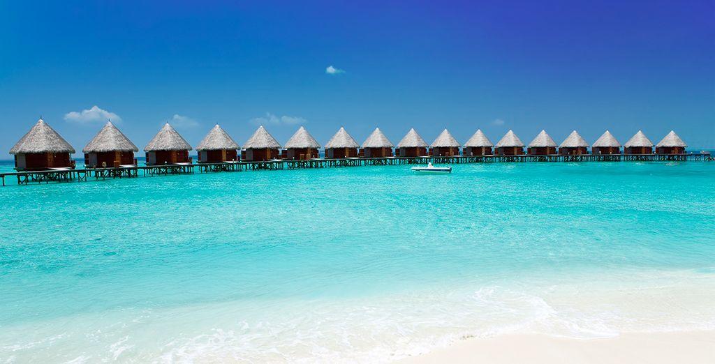 Un viaje inolvidable a India y Maldivas
