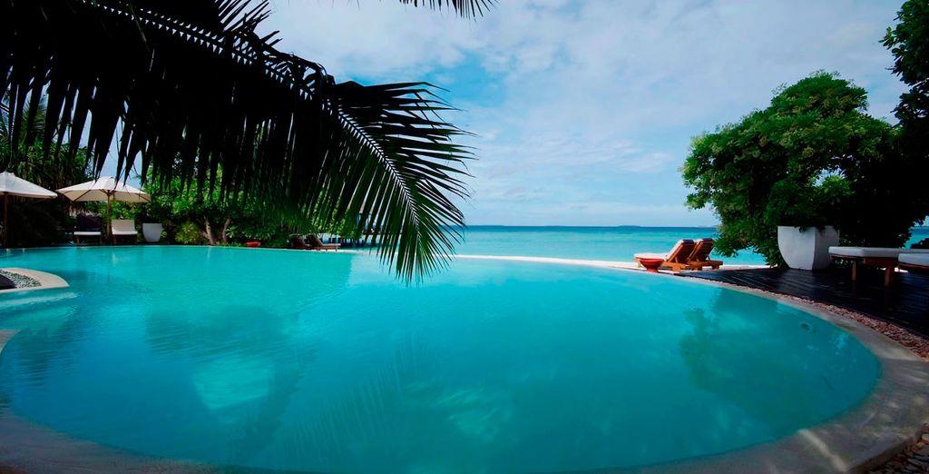 Túmbate al cálido sol de las Maldivas en la piscina de tu hotel 5*