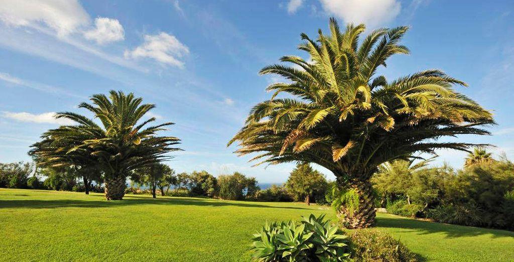 Verdes jardines envuelven el hotel