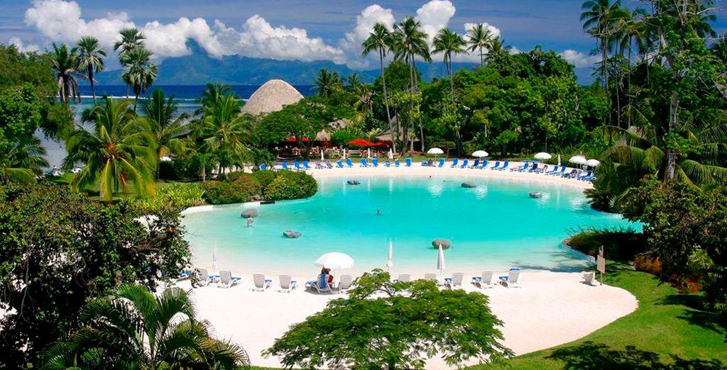 La piscina envuelta de vegeteción en Meridien Tahití