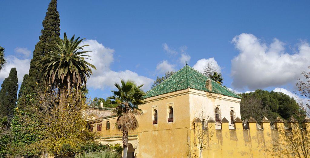 Viva su propia historia de Las Mil y una noches en Fez