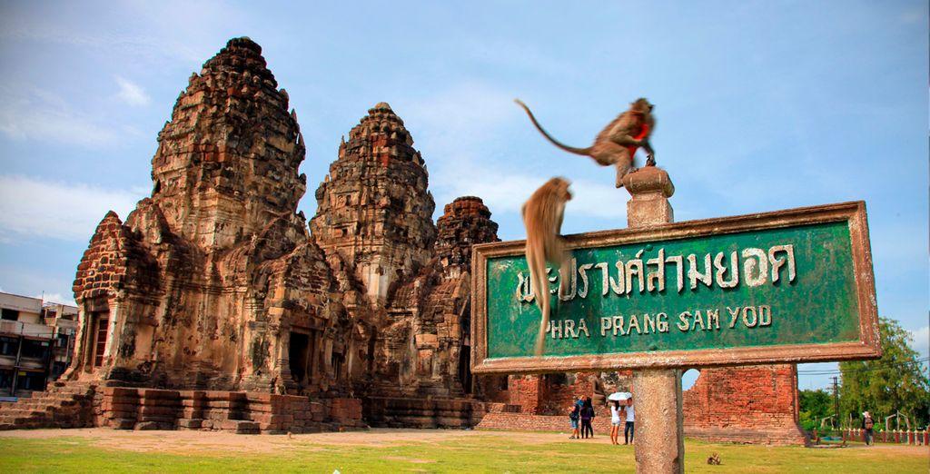 Lopburi y el famoso Templo de los monos