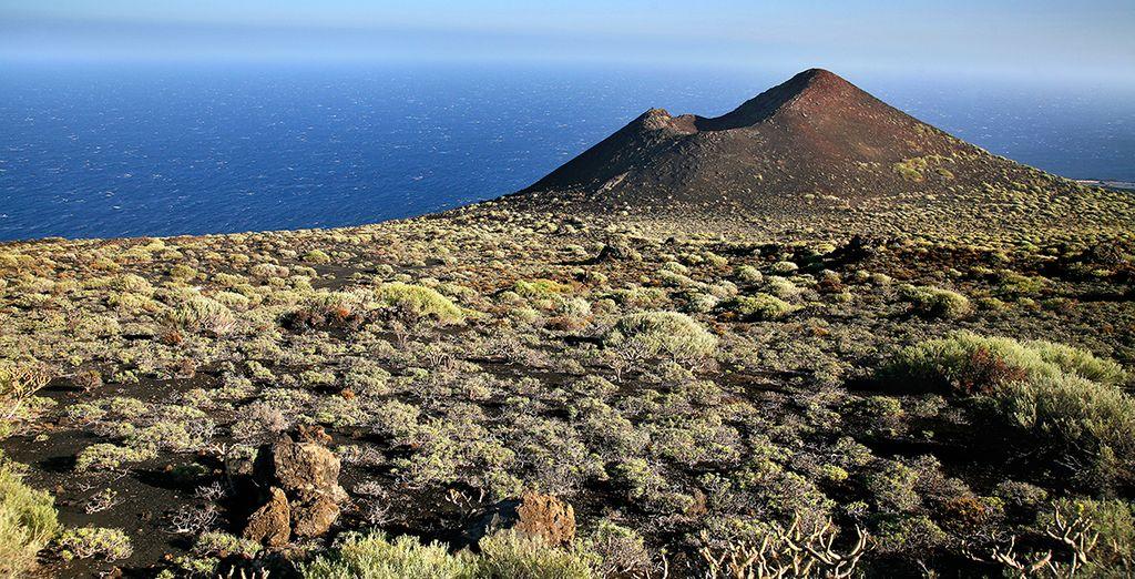 La Palma cuenta con una vegetación que le impresionará