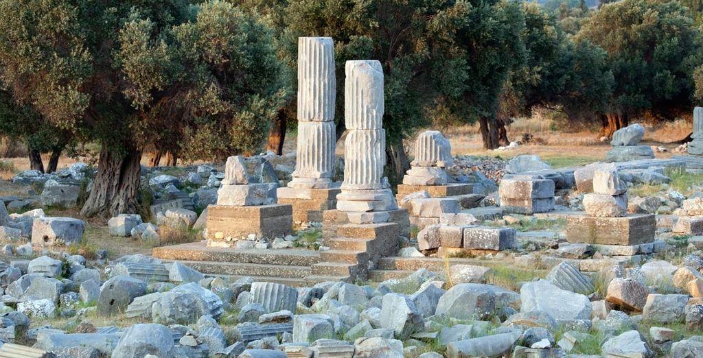 Visite la ruinas de Teos