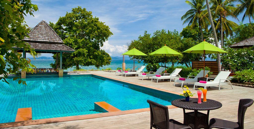 Bienvenido al paraíso tropical donde todo es posible