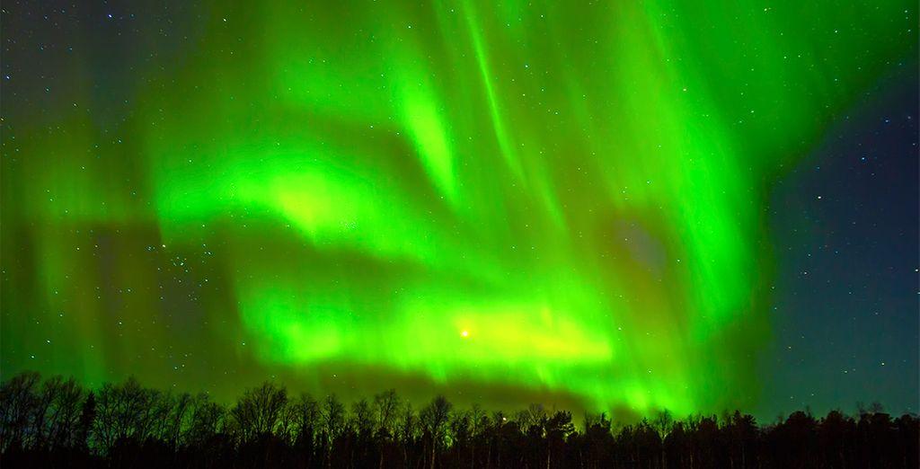 Las auroras boreales, un despliegue etéreo de colores resplandecientes