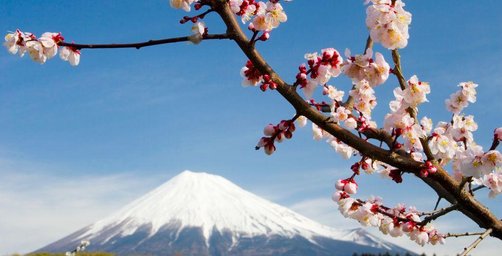 Vista de la fantástica cima del Monte Fuji