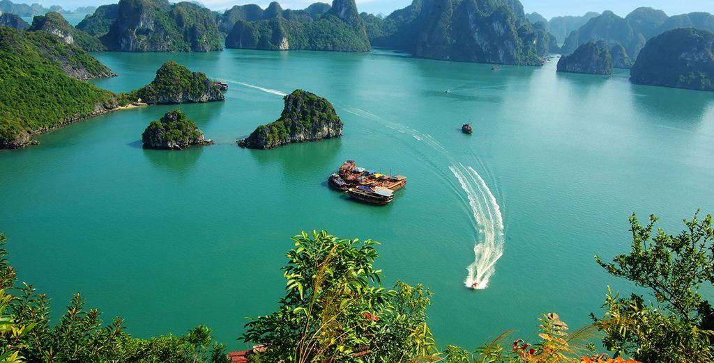 Disfrute de un crucero por la Bahía de Halong