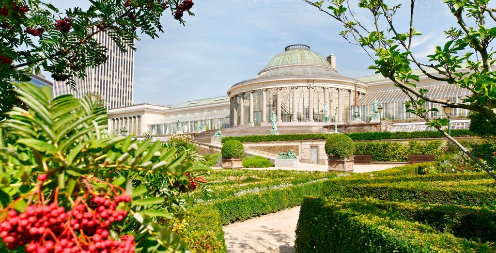 Aproveche la entrada a la Exposición del Jardín Botánico