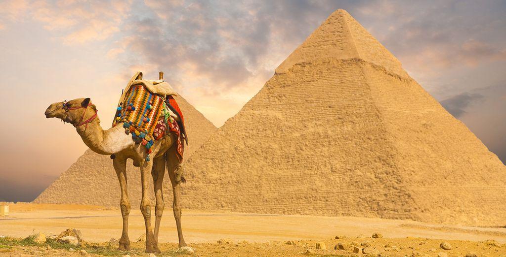 Visitará las majestuosas e intrigantes pirámides...