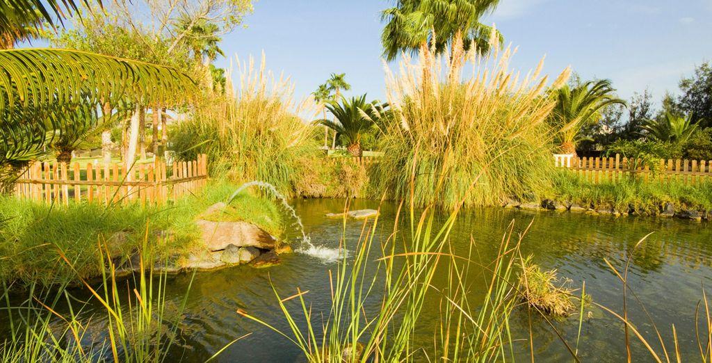 Rodeado de jardines y zonas verdes
