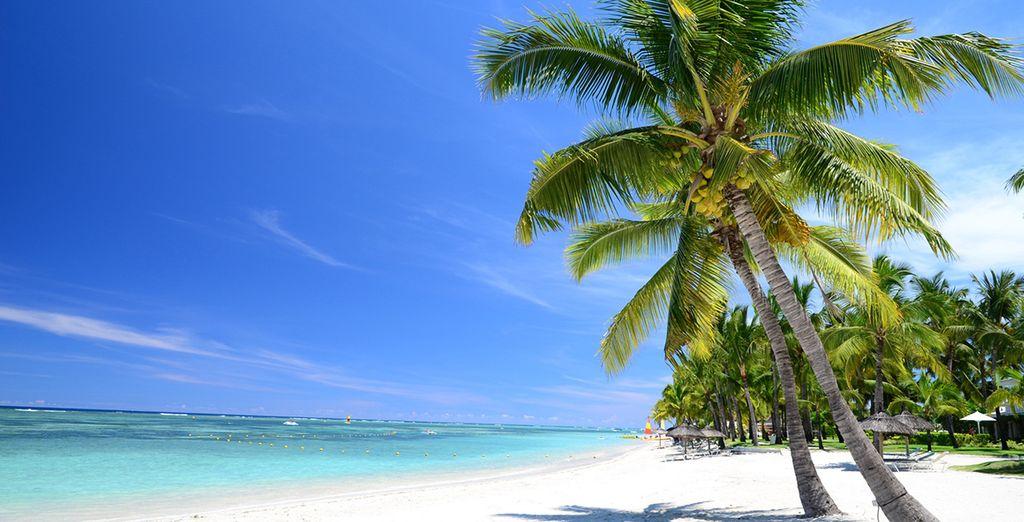 Pasee por sus playas y disfrute de la naturaleza del lugar