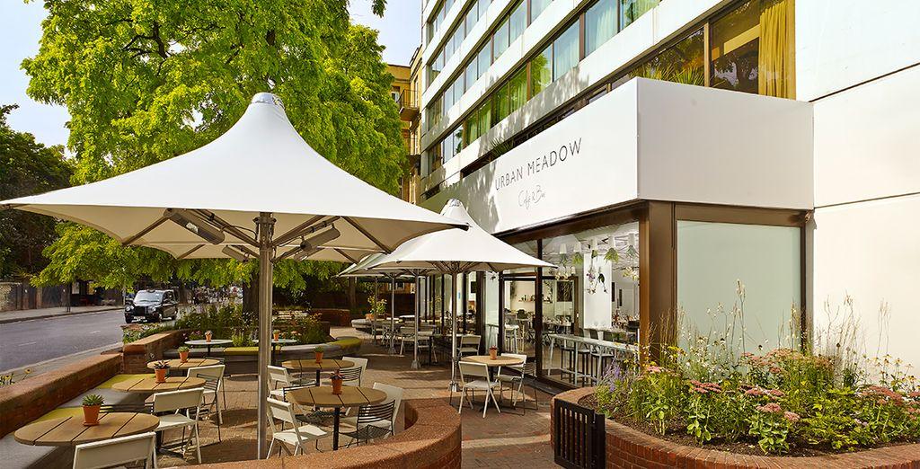 Una extensa terraza en la que relajarse con una buena taza de café