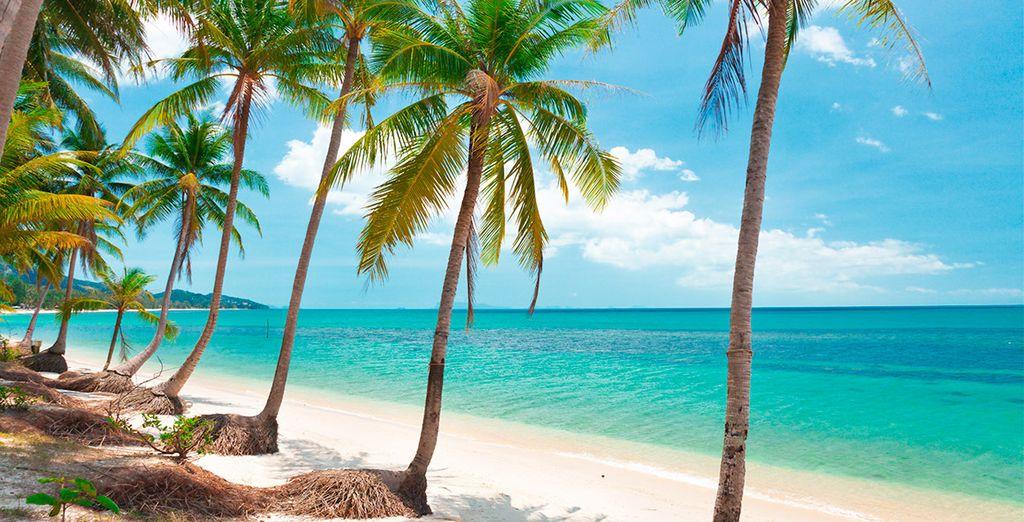 El contraste de la arena blanca y el azul del mar le dejará embelesado