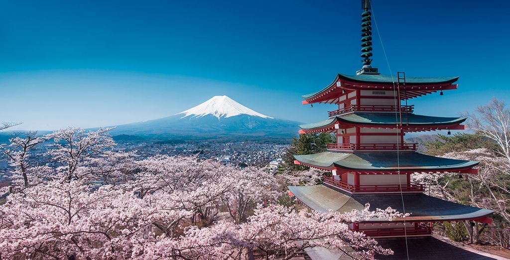 Bienvenido a Japón