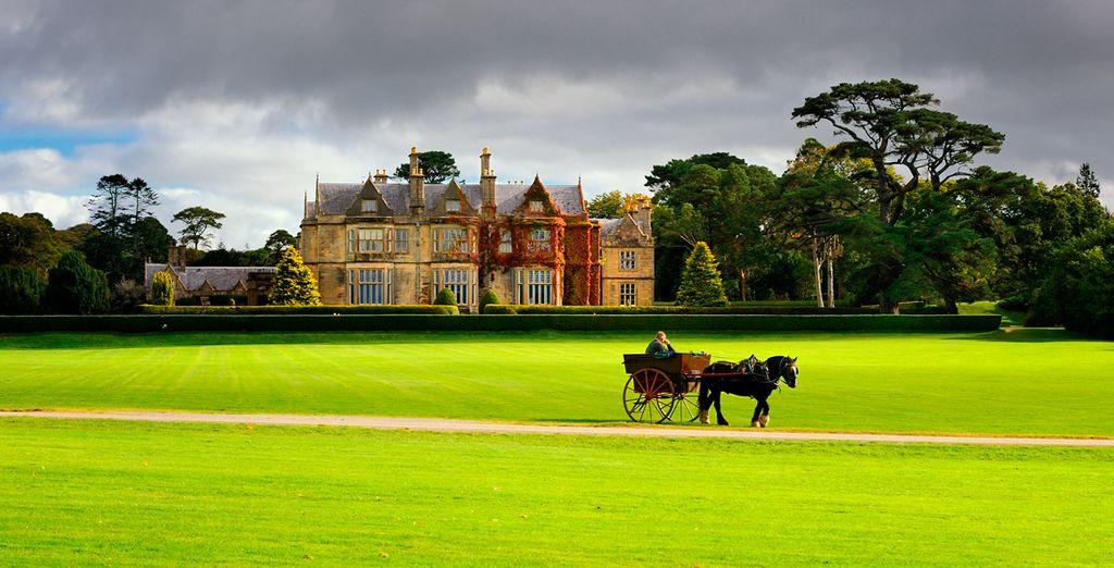 Dará un paseo en carruaje tradicional en los jardines de Muckross House